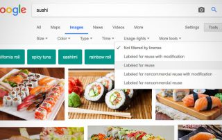 Screenshot of Google Images filter tools in use.